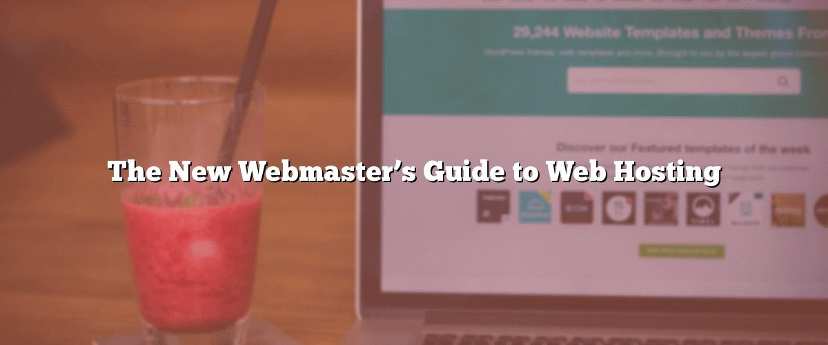 The New Webmaster's Guide to Web Hosting